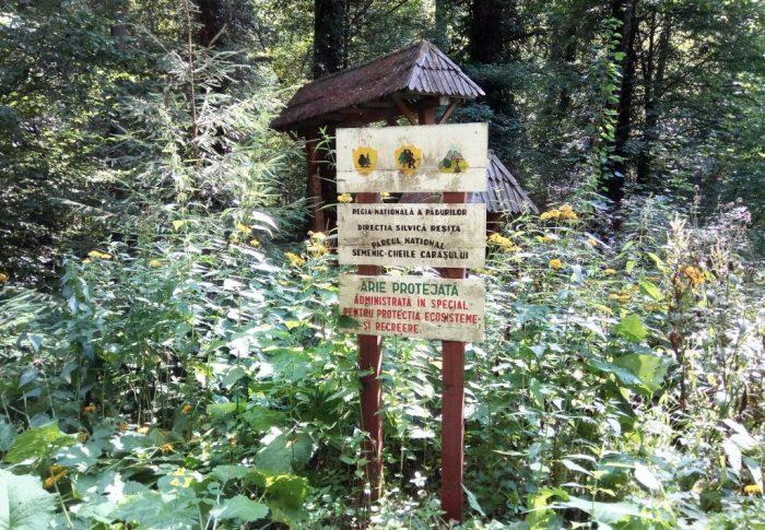 Mihai Goțiu: Siturile UNESCO pot aduce mai multe beneficii României decât oaia lui Daea