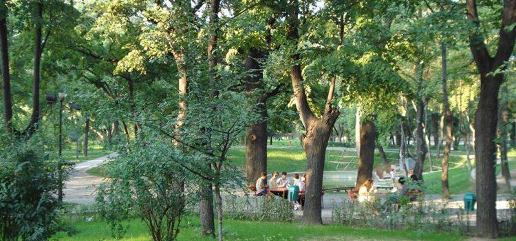 Uniunea Salvaţi România se opune distrugerii parcului Kiseleff
