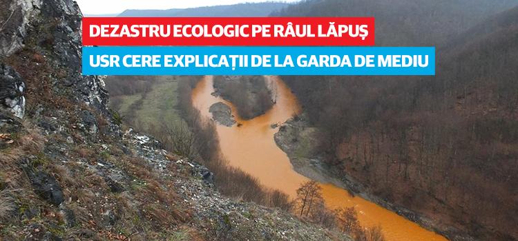 Parlamentarii USR cer explicații cu privire la dezastrul ecologic de pe râul Lăpuș