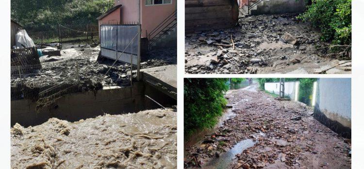 Cristina Iurișniți: Defrișările ilegale, incompetența și dezinteresul amplifică efectele dezastruoase ale inundațiilor!