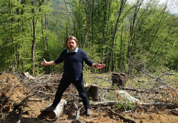 Amenințări cu moartea, în timpul documentării de către senatorul USR Mihai Goțiu a tăierilor ilegale de păduri din județul Cluj