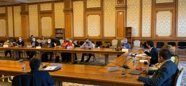 Iulian Bulai: TVR trebuie să fie o televiziune puternică. Planul USR PLUS de reformă