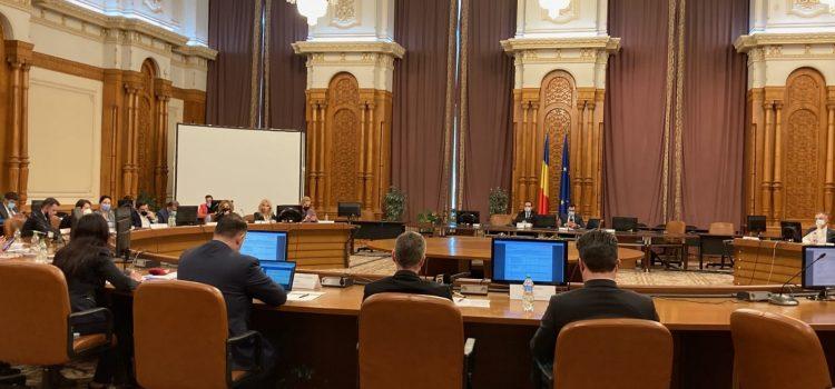 Raport favorabil în Comisia juridică a Camerei Deputaților pentru desființarea Secției speciale